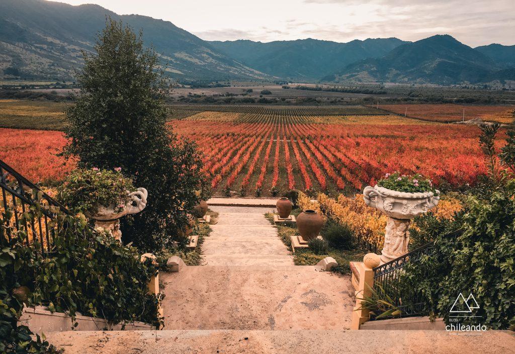 Fim de tarde na vinícola Santa Cruz, um destino romântico no Chile