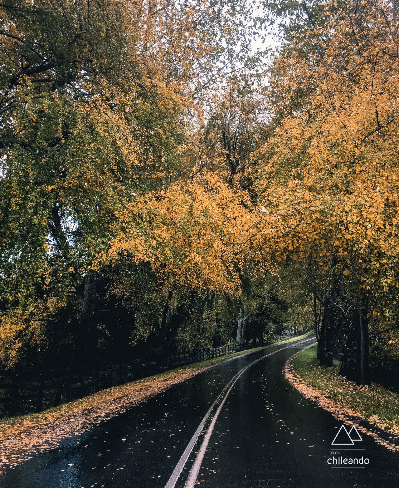 Estradas espetaculares circundam o lago Llanquihue