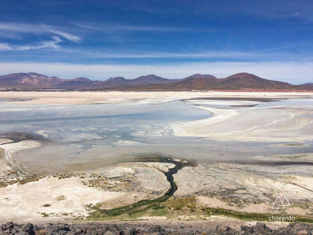 Salar de Talar, no Atacama
