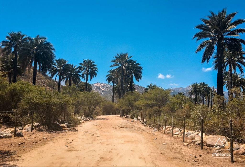 Estrada de acesso ao parque La Campana