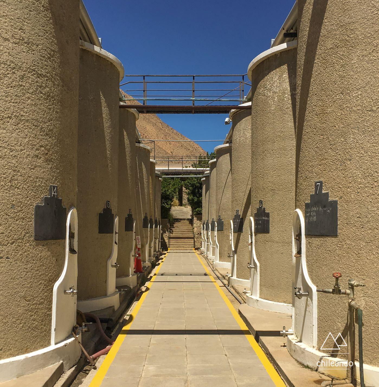 Visita à destilaria Mistral, em Pisco Elqui