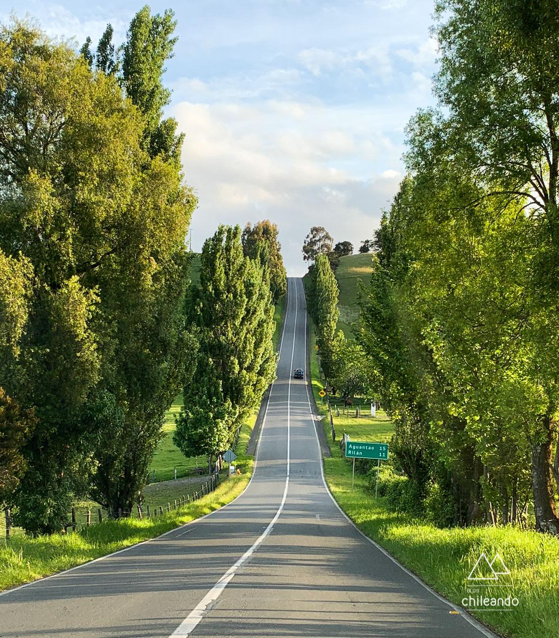 Estradas lindas e muito verdes em Chiloé