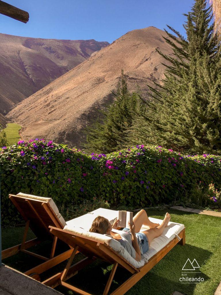 Quintal da cabana 7, em Pisco Elqui